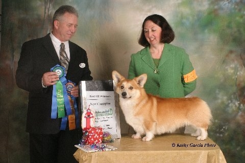 New Champion at a supported entry over specials, Judge David Arthur